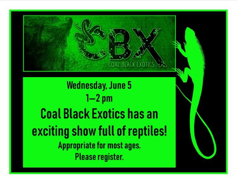 June 2019 Coal Black Exotics.jpg